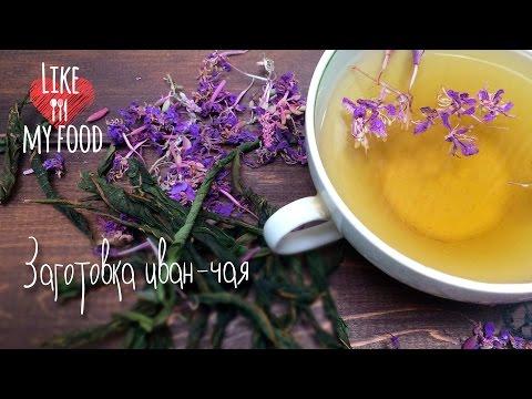 Как правильно заваривать Иван-чай? - allWomens