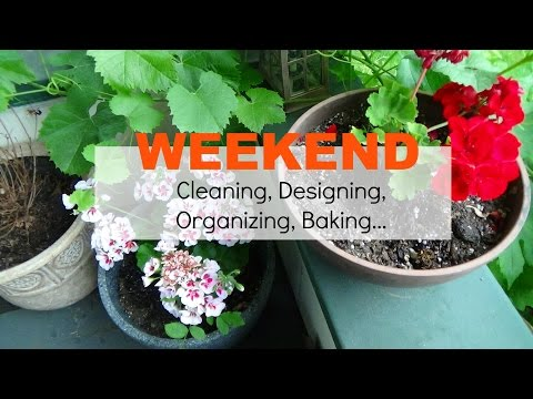 Weekend cleaning, baking and designing   perfect