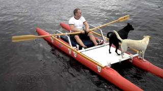 Video Rowing with dogs on board an Expandacraft Rowing Catamaran download MP3, 3GP, MP4, WEBM, AVI, FLV September 2017