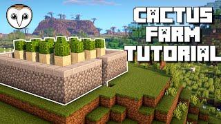 Minecraft: Automatic Cactus Farm | EASY Tutorial (NO ZERO TICK!) (1.15+)