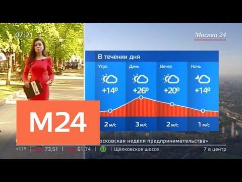 """""""Утро"""": синоптики пообещали москвичам жаркую погоду в понедельник - Москва 24"""