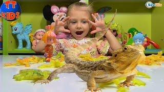 ФИКСИКИ Симка и Нолик. Ярослава выращивает ящериц в воде. Игрушки для детей. Tiki Taki Kids