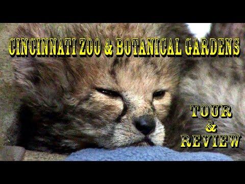 Cincinnati Zoo & Botanical Garden 2016 Complete Park Tour In HD!!!