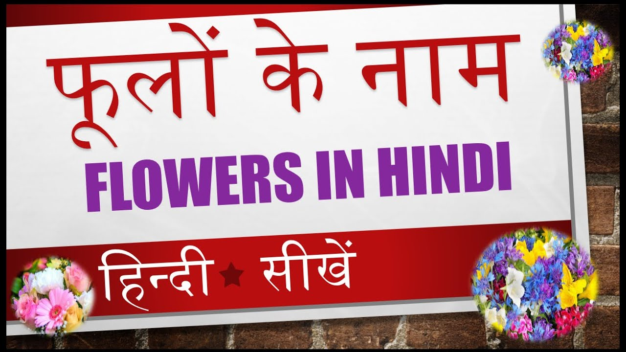 learn name of flowers in hindi video  of, Beautiful flower
