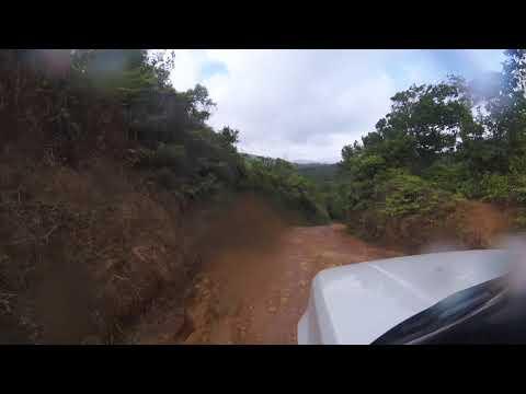 Cerro Azul - Jungle Airbnb
