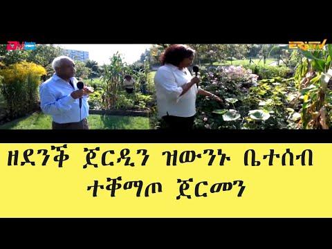 ደሃይ ደቂ ሓደ ልቢ፡ Mrs. Luel Tewolde & Mr. Menghisteab Araya's exemplary garden in Cologne, Germany