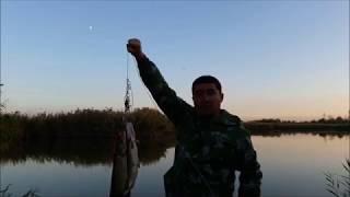 Ловля щуки в октябре. Рыбалка в КБР.
