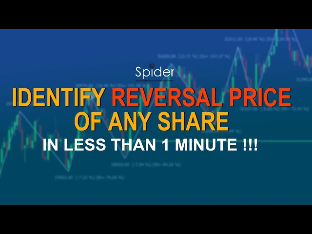 IDENTIFY the REVERSAL PRICE of any SHARE in just 1 MINUTE | Spider Software | Tutorial