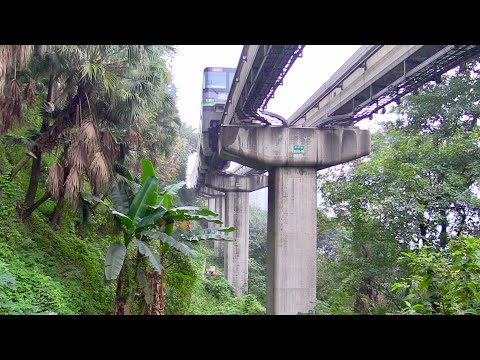 Chongqing Monorail Through Building, Forests