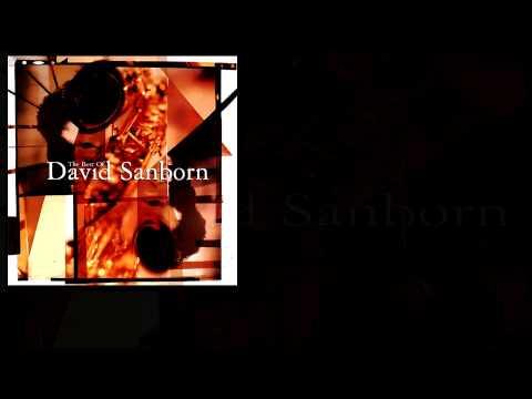 David Sanborn - Anything You Want