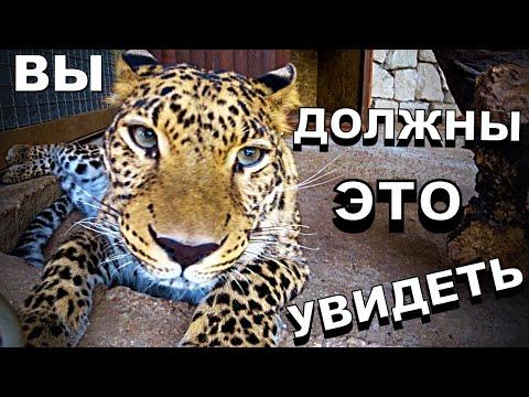 Что стоит посетить в Крыму в 2020 году туристу! БАХЧИСАРАЙ