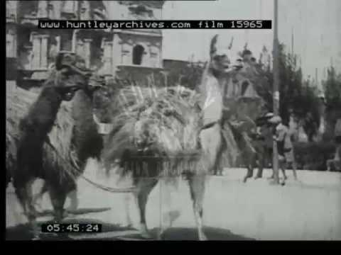 Ancient Andes, 1930s - Film 15965