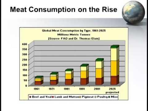 Dr. Marty D. Matlock - Impacts of GMO Products on Food Secur