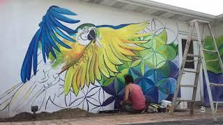 TIMELAPSE Mural Animal Hospital