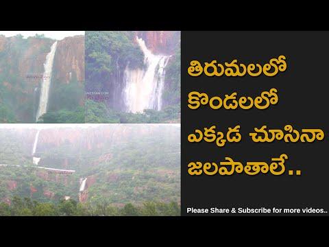 Beauty of Tirumala Hills With Waterfalls After Nivar Cyclone