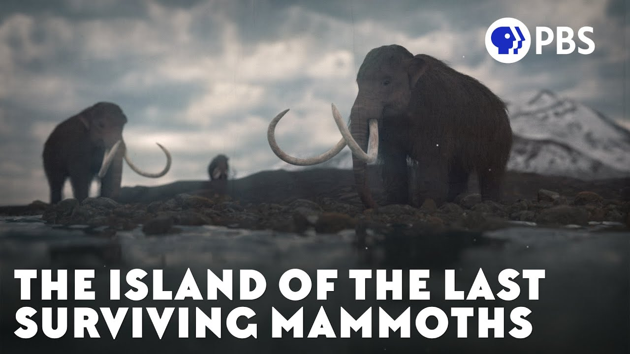 Download The Island of the Last Surviving Mammoths
