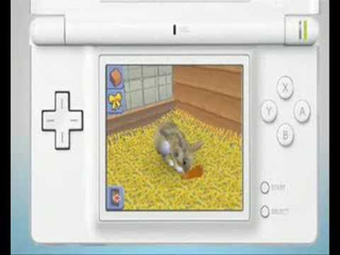 The Sims 2 Apartment Pets For Nintendo Ds