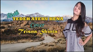 Lagu Karo Shinta