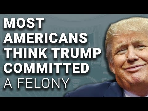 Most Americans Think Trump Committed Felony, Trump Claims Better Approval Than Obama