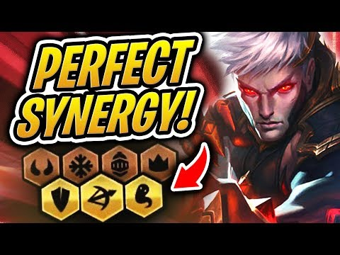 The PERFECT SYNERGY Team! | Teamfight Tactics | TFT | League of Legends Auto Chess