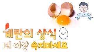 계란상식 제대로 알고 구입하자 더 이상 속지마세요