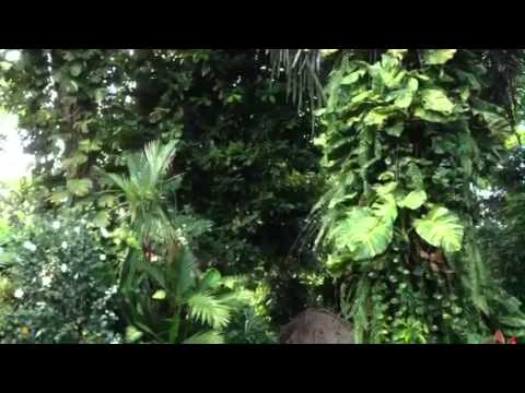 Villa Tukad- Bali