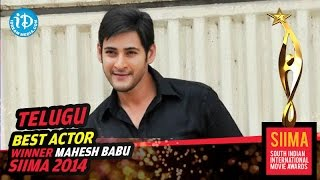SIIMA 2014 Awards - Best Actor in Telugu Mahesh Babu for Seethamma Vakitlo Sirimalle Chettu Movie