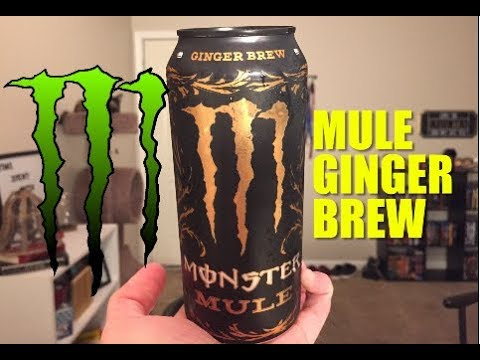 Monster Mule Ginger Brew Review Youtube Headless mule's item drop, stats, hit, flee, range, speed, race, element, size, base exp, job exp, hp and sp. monster mule ginger brew review