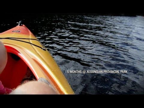 5 Months - Algonquin Provincial Park 2012
