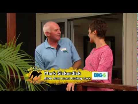 BIG4 Gold Coast Holiday Park on What's Up Downunder