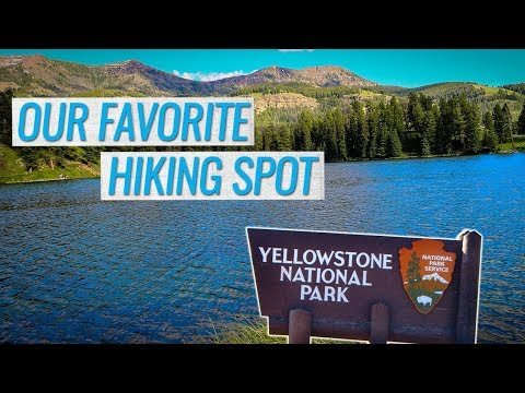 Our FAVORITE Hike at Yellowstone National Park