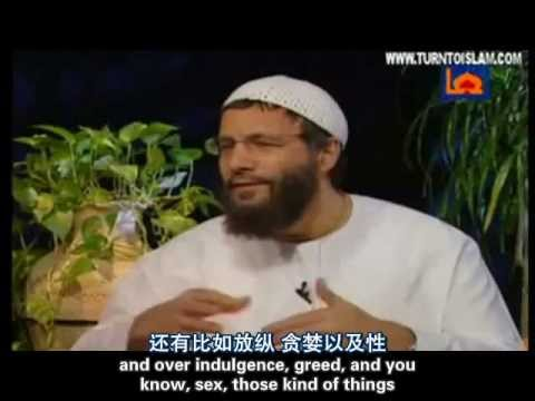 Yusuf Islam Interview [English +Chinese Subtitle]