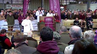 Arwerthiant Pencampwyr y Defaid | Sheep Champion Sale