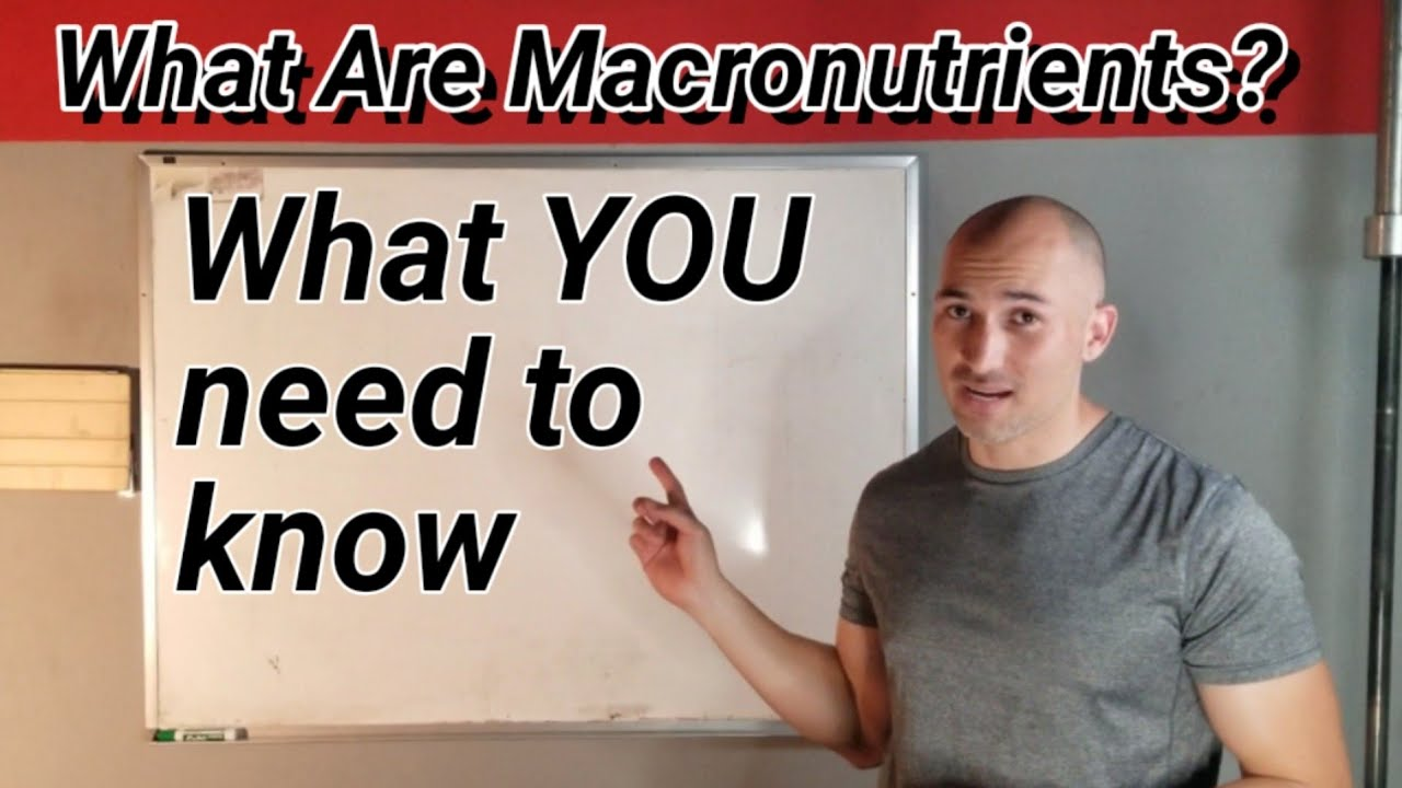 What are Macronutrients?What YOU need to know