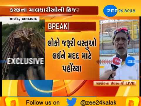 Ahmedabad : Cattle breeders from Drought-Hit Kutch migrate to Sanand|Zee24Kalak