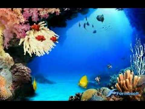 Aquario _3D_para PC_Ahora en HD 1080p.- [SCREENSAVER] from YouTube · Duration:  5 minutes 2 seconds