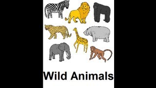 Learn English - Lesson #27: Wild Animals - Singular and Plural, Pronunciation