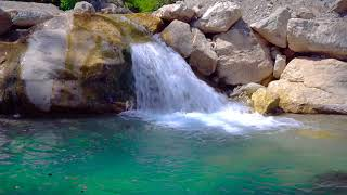 🎧 Relaxing Waterfall & Jungle Sounds | Soothing Nature Sounds