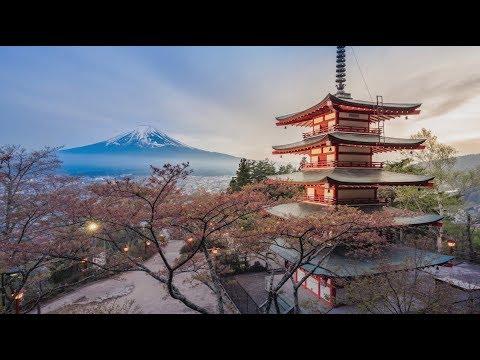 Japan: Economic Health Check
