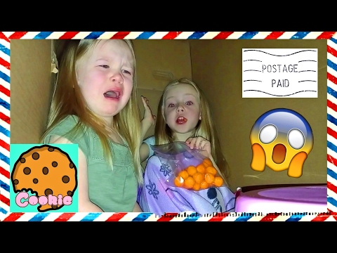 Thumbnail: I Mailed Myself to CookieSwirlC with Little Sister IT WORKED!!! Met Evan on Way to Ryans Toy Review