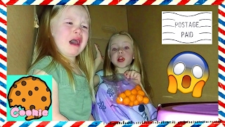 I Mailed Myself to CookieSwirlC with Little Sister IT WORKED!!! Met Evan on Way to Ryans Toy Review