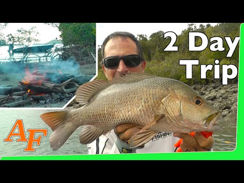 Catch n Cook over night fishing trip Andy's Fish Video EP.330