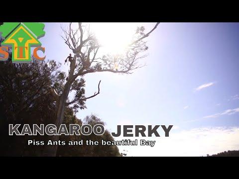 KANGAROO JERKY, ANTS AND THE BEAUTIFUL BAY ( Tree Services Tasmania ) Southern Tas Tree Removal