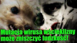 Mutacja wścieklizny może spowodować apokalipsę zombie!