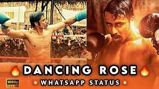 Dancing RoseWhatsapp❤️Status|sarpatta parambarai whatsapp status|trending whatsapp status tamil|