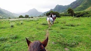 Amazing horseback riding where Jurassic Park was filmed - Kualoa Ranch, Hawaii (4K video)