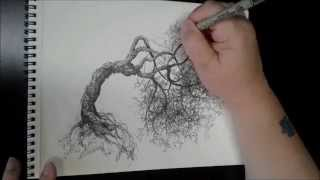 Tree Drawing Time Lapse