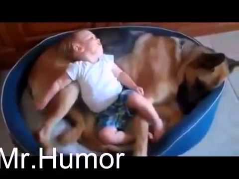 Самое смешное видео про детей и животных 2014! Ржач