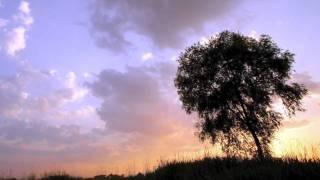 S.E.N.S.の「風のように」の曲に合わせて空と雲と木々をメインにHDフォ...