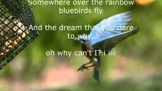 Baixar Somewhere over the Rainbow lyrics - Israel Kamakawiwo'ole